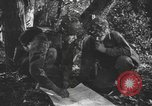 Image of United States soldiers United States USA, 1944, second 4 stock footage video 65675076750