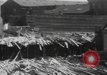 Image of damage from hurricane Rhode Island United States USA, 1938, second 12 stock footage video 65675076800