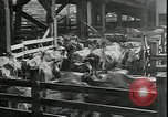 Image of American farmers Kansas City Missouri USA, 1934, second 3 stock footage video 65675076823