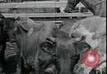 Image of American farmers Kansas City Missouri USA, 1934, second 5 stock footage video 65675076823