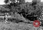 Image of 30th Infantry advancing in World War II Pietravairano Italy, 1943, second 3 stock footage video 65675076935