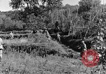 Image of 30th Infantry advancing in World War II Pietravairano Italy, 1943, second 4 stock footage video 65675076935