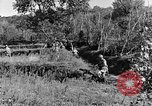 Image of 30th Infantry advancing in World War II Pietravairano Italy, 1943, second 5 stock footage video 65675076935