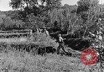 Image of 30th Infantry advancing in World War II Pietravairano Italy, 1943, second 6 stock footage video 65675076935