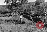Image of 30th Infantry advancing in World War II Pietravairano Italy, 1943, second 7 stock footage video 65675076935