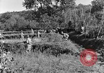 Image of 30th Infantry advancing in World War II Pietravairano Italy, 1943, second 9 stock footage video 65675076935