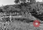 Image of 30th Infantry advancing in World War II Pietravairano Italy, 1943, second 10 stock footage video 65675076935