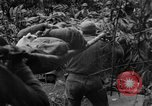 Image of Chinese soldiers Burma, 1943, second 1 stock footage video 65675076944