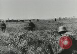 Image of German soldiers Normandy France, 1944, second 12 stock footage video 65675077014