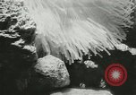Image of Actinia Austria, 1957, second 12 stock footage video 65675077123