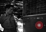Image of 8th Photographic Reconnaissance Squadron Australia, 1943, second 8 stock footage video 65675077235
