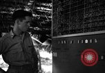 Image of 8th Photographic Reconnaissance Squadron Australia, 1943, second 10 stock footage video 65675077235
