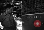 Image of 8th Photographic Reconnaissance Squadron Australia, 1943, second 11 stock footage video 65675077235