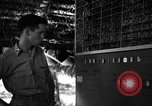 Image of 8th Photographic Reconnaissance Squadron Australia, 1943, second 12 stock footage video 65675077235