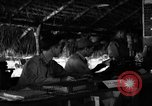 Image of 8th Photographic Reconnaissance Squadron Australia, 1943, second 6 stock footage video 65675077236