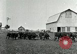Image of cowboys with cattle herd  United States USA, 1921, second 5 stock footage video 65675077361
