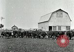 Image of cowboys with cattle herd  United States USA, 1921, second 7 stock footage video 65675077361