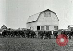 Image of cowboys with cattle herd  United States USA, 1921, second 9 stock footage video 65675077361