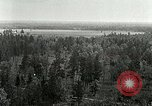 Image of Tree and stump clearing United States USA, 1921, second 6 stock footage video 65675077367