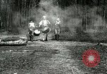Image of Revolutionary reenactor drummers and fife player United States USA, 1916, second 10 stock footage video 65675077372