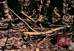 Image of United States Marines Bougainville Island Papua New Guinea, 1944, second 12 stock footage video 65675077479