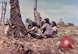Image of natives Eniwetok Atoll Marshall Islands, 1944, second 2 stock footage video 65675077521