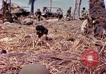Image of natives Eniwetok Atoll Marshall Islands, 1944, second 5 stock footage video 65675077521