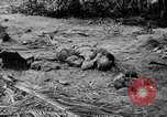 Image of Japanese prisoners Solomon Islands, 1945, second 3 stock footage video 65675077697