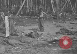 Image of Japanese prisoners Solomon Islands, 1945, second 12 stock footage video 65675077697