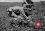 Image of flame thrower Solomon Islands, 1945, second 6 stock footage video 65675077699