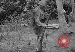 Image of Japanese rifle Solomon Islands, 1945, second 2 stock footage video 65675077700