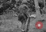 Image of Japanese rifle Solomon Islands, 1945, second 3 stock footage video 65675077700