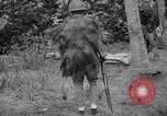 Image of Japanese rifle Solomon Islands, 1945, second 4 stock footage video 65675077700