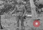 Image of Japanese rifle Solomon Islands, 1945, second 10 stock footage video 65675077700