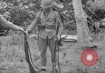 Image of Japanese rifle Solomon Islands, 1945, second 11 stock footage video 65675077700