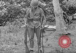 Image of Japanese rifle Solomon Islands, 1945, second 12 stock footage video 65675077700