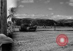 Image of P-40 aircraft Solomon Islands, 1945, second 1 stock footage video 65675077703