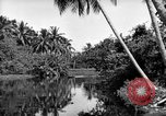 Image of United States Marines Solomon Islands, 1945, second 6 stock footage video 65675077705