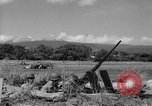 Image of United States Marines Solomon Islands, 1945, second 6 stock footage video 65675077708