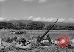 Image of United States Marines Solomon Islands, 1945, second 7 stock footage video 65675077708