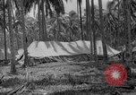 Image of United States Marines Solomon Islands, 1945, second 1 stock footage video 65675077709