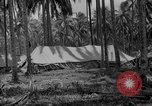 Image of United States Marines Solomon Islands, 1945, second 4 stock footage video 65675077709