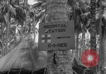 Image of United States Marines Solomon Islands, 1945, second 7 stock footage video 65675077709