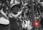 Image of United States Marines Solomon Islands, 1945, second 6 stock footage video 65675077710