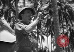 Image of United States Marines Solomon Islands, 1945, second 7 stock footage video 65675077710