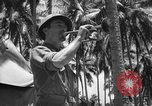 Image of United States Marines Solomon Islands, 1945, second 8 stock footage video 65675077710