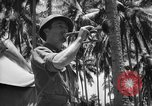 Image of United States Marines Solomon Islands, 1945, second 9 stock footage video 65675077710