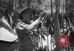 Image of United States Marines Solomon Islands, 1945, second 11 stock footage video 65675077710