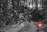 Image of United States Marines Solomon Islands, 1945, second 12 stock footage video 65675077710