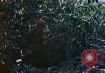 Image of 2nd Marine Division Saipan Northern Mariana Islands, 1944, second 8 stock footage video 65675077875